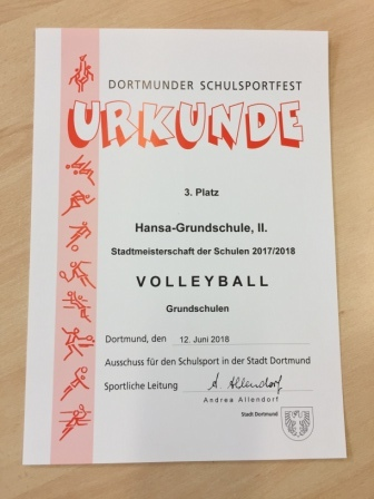 Urkunde Volleyball